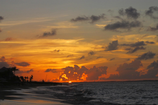 sunset-from-regent-palms-by-noemia