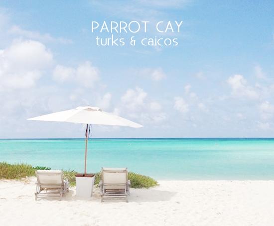 my-sea-story-parrot-cay-1