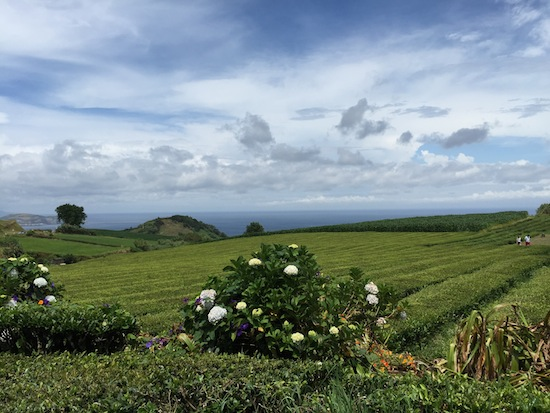 azores-by-myseastory-37